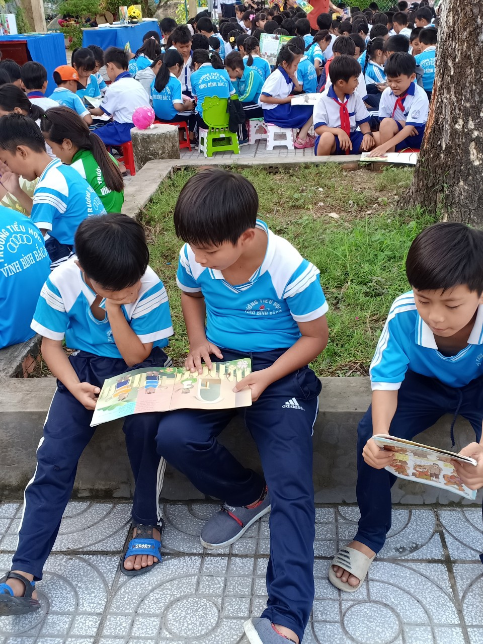Đọc sách ngoài sân trường